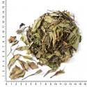 """Белый китайский чай """"Брови долголетия / Shou Mei"""""""